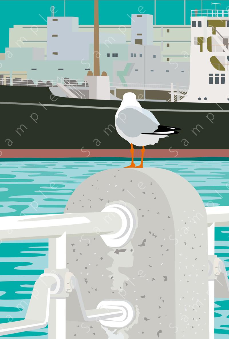image of 氷川丸を見つめるカモメ